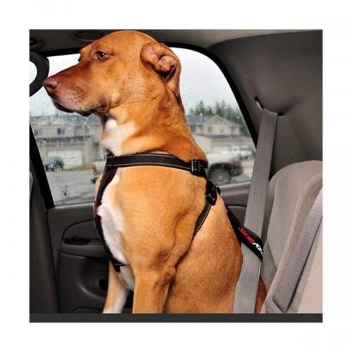 Attache-ceinture pour voiture Ezydog