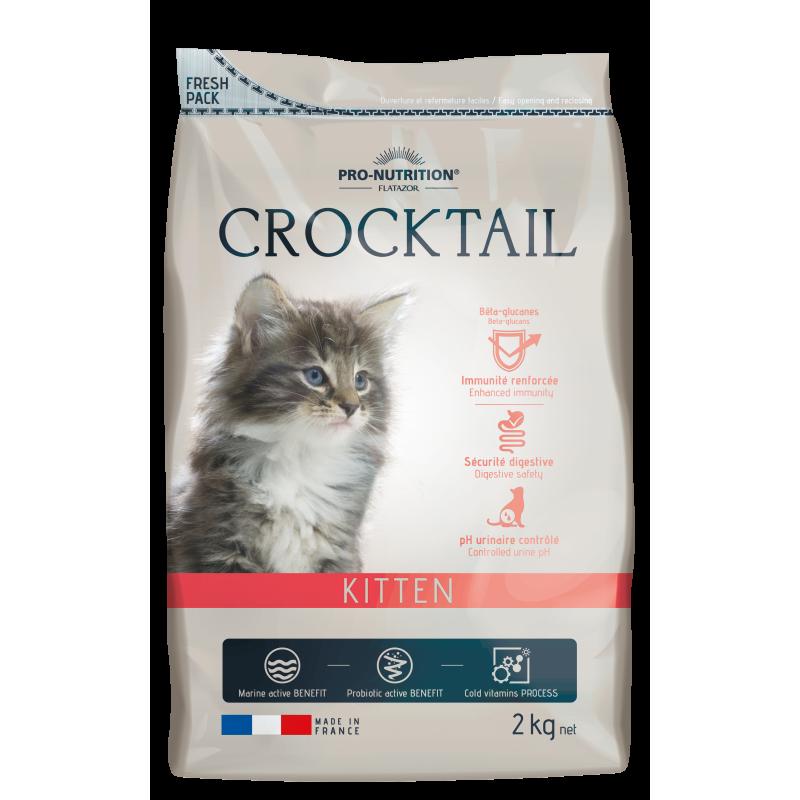 Crocktail Kitten